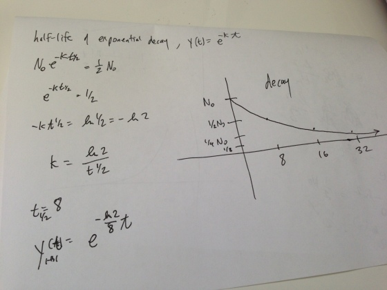 back-of-the-envelope decay calculations